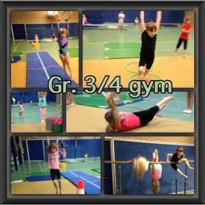gr.3 4 gym