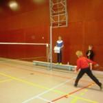 SNA badminton clubkampioenschappen 2016  (3)
